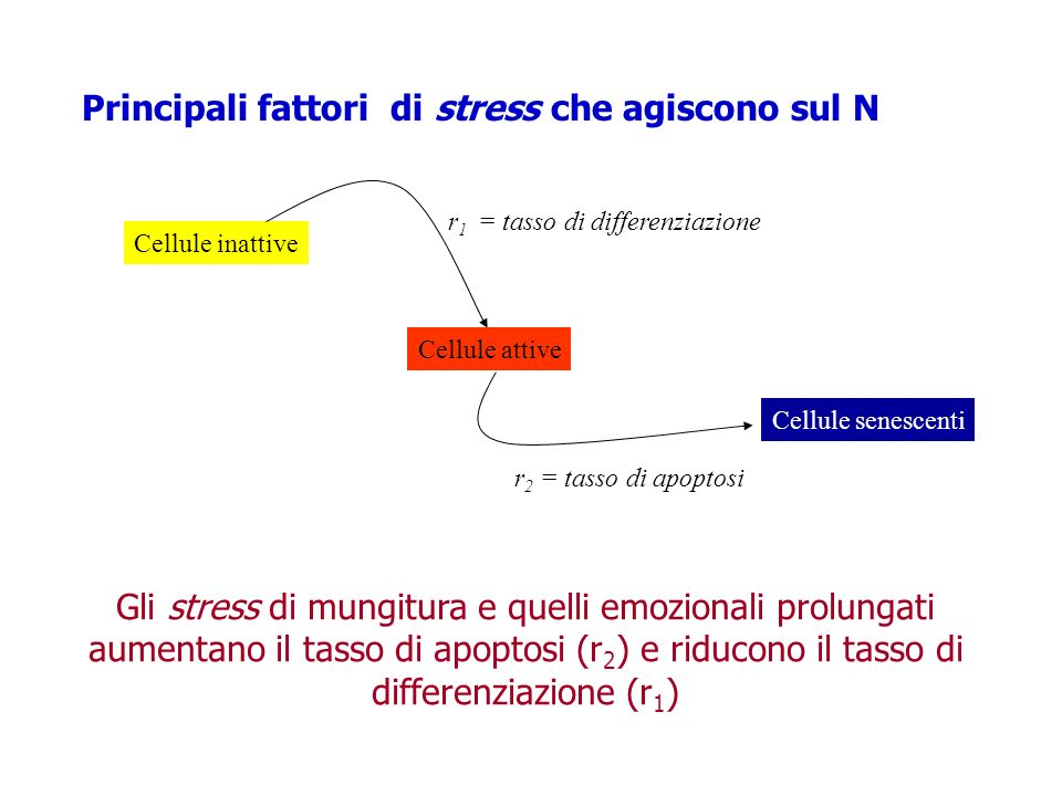 Principali fattori di stress che agiscono sul N