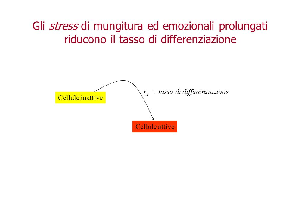 Gli stress di mungitura ed emozionali prolungati riducono il tasso di differenziazione
