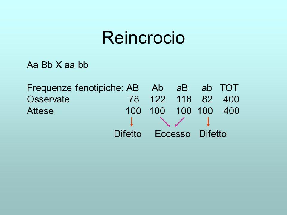 Reincrocio Aa Bb X aa bb Frequenze fenotipiche: AB Ab aB ab TOT