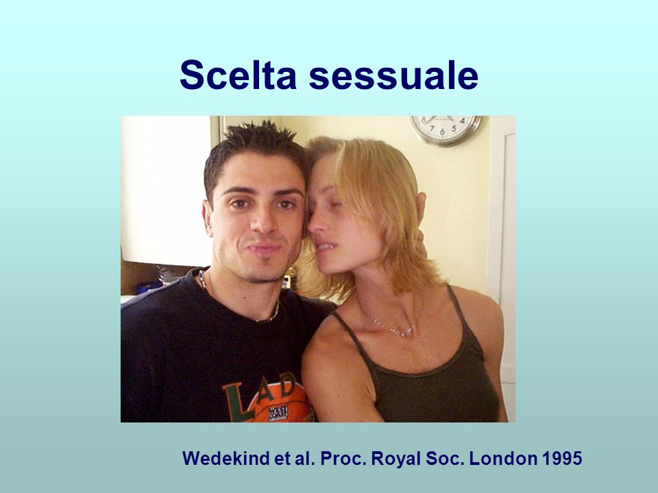 Scelta sessuale Wedekind et al. Proc. Royal Soc. London 1995