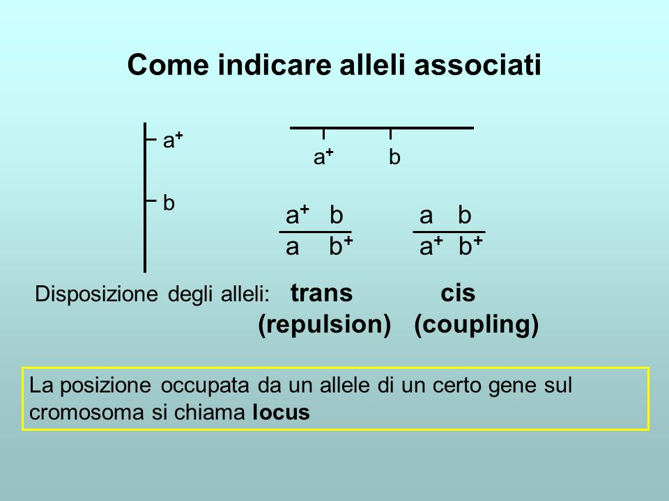 Come indicare alleli associati