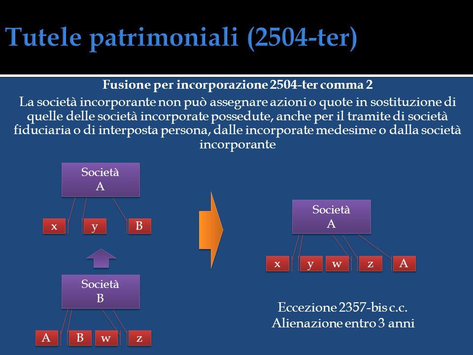 Tutele patrimoniali (2504-ter)