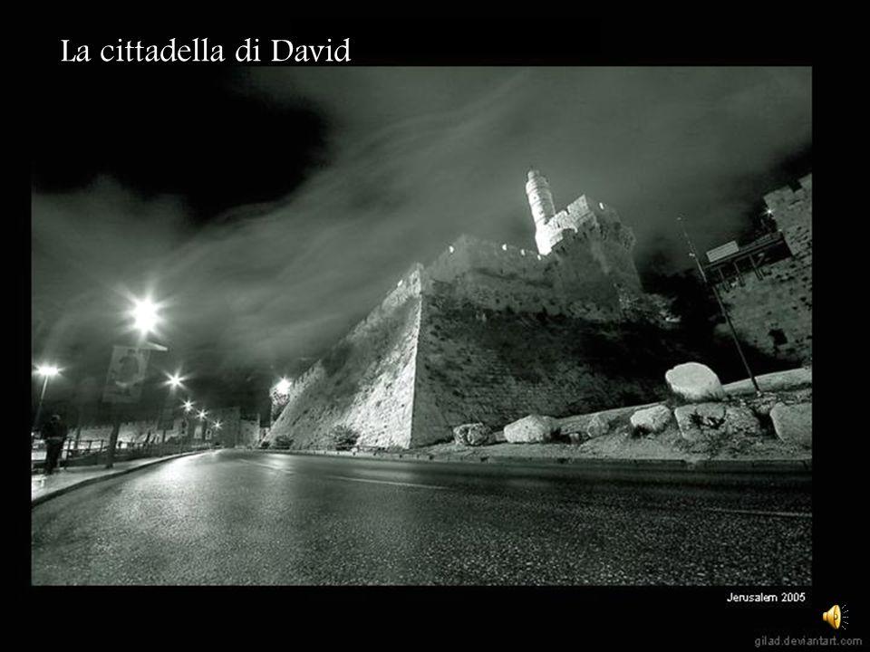La cittadella di David