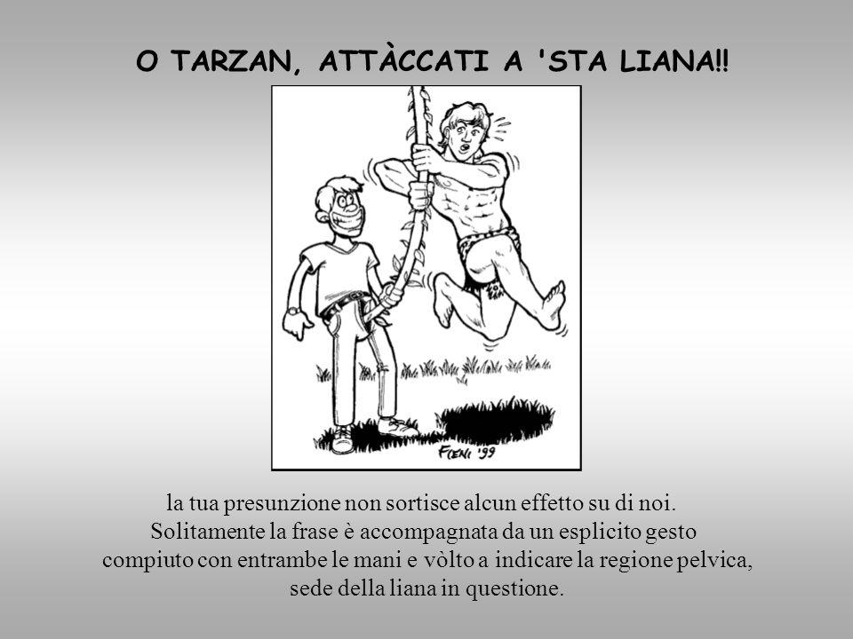 O TARZAN, ATTÀCCATI A STA LIANA!!
