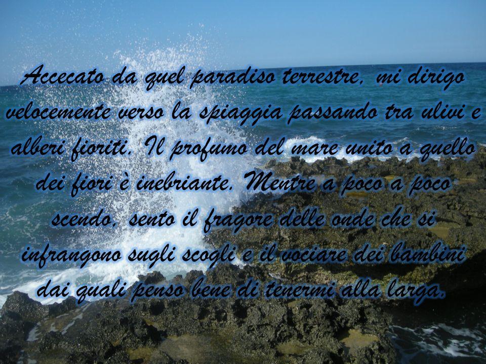 Accecato da quel paradiso terrestre, mi dirigo velocemente verso la spiaggia passando tra ulivi e alberi fioriti.