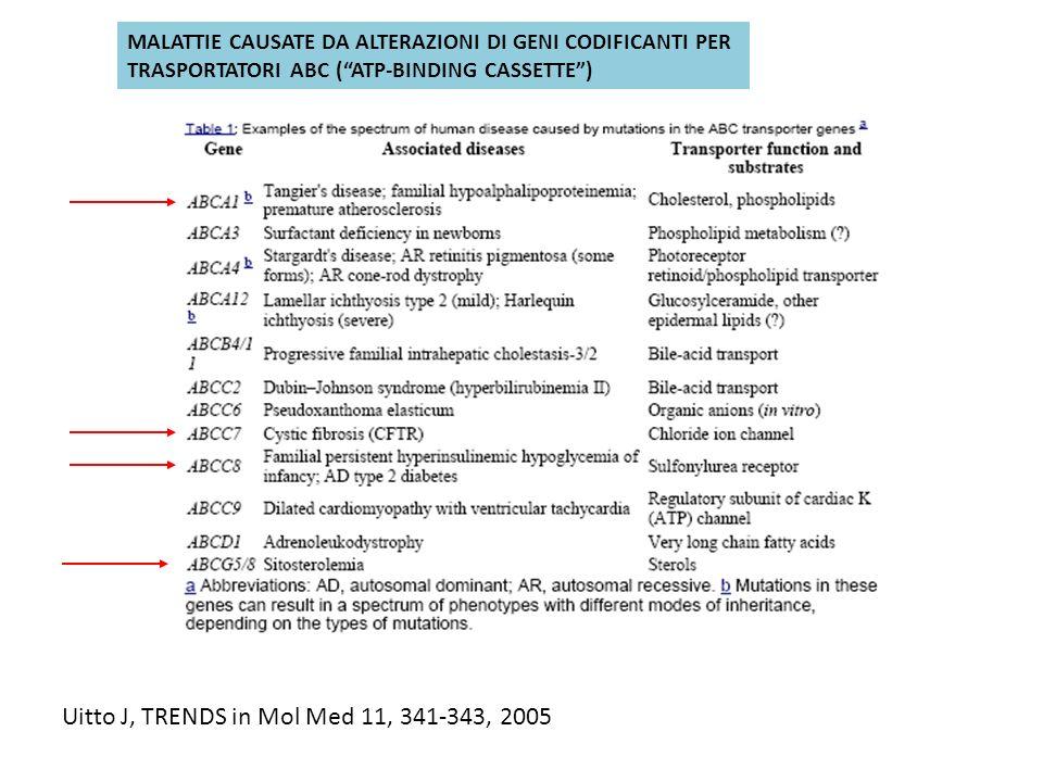 Uitto J, TRENDS in Mol Med 11, 341-343, 2005