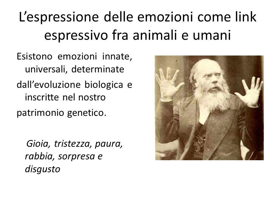 L'espressione delle emozioni come link espressivo fra animali e umani