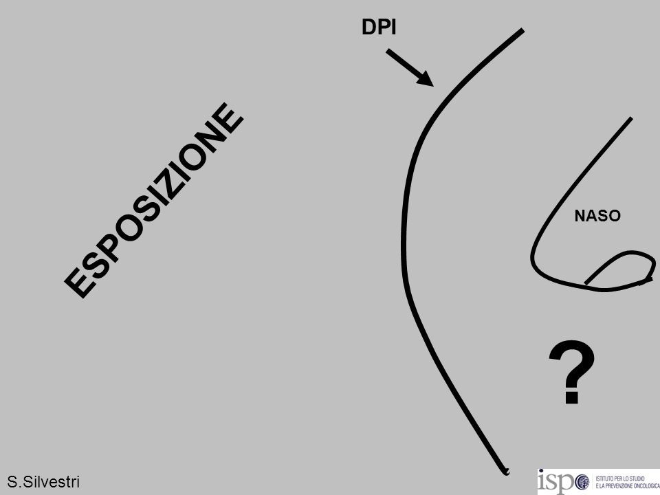 DPI ESPOSIZIONE NASO S.Silvestri