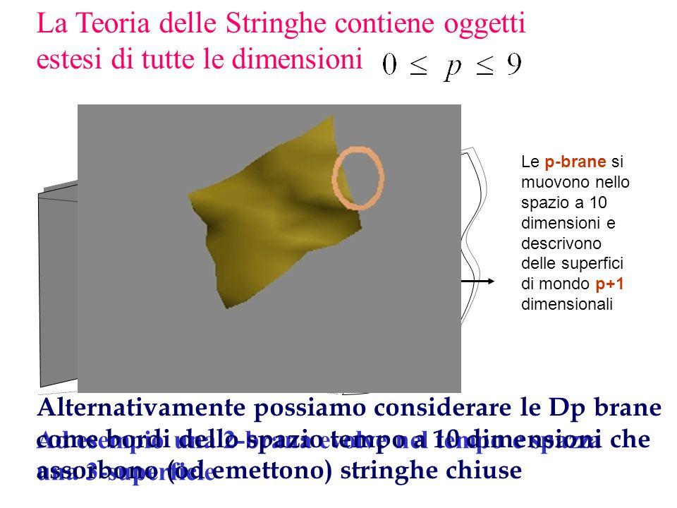 La Teoria delle Stringhe contiene oggetti estesi di tutte le dimensioni