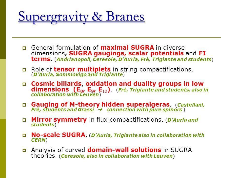 Supergravity & Branes
