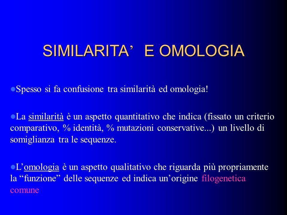 SIMILARITA' E OMOLOGIA