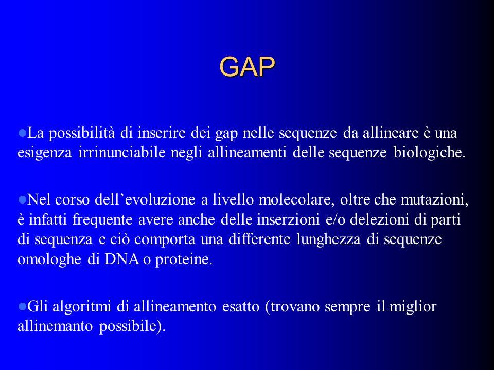 GAP La possibilità di inserire dei gap nelle sequenze da allineare è una esigenza irrinunciabile negli allineamenti delle sequenze biologiche.