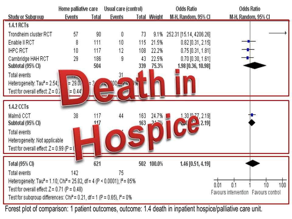 Death in Hospice