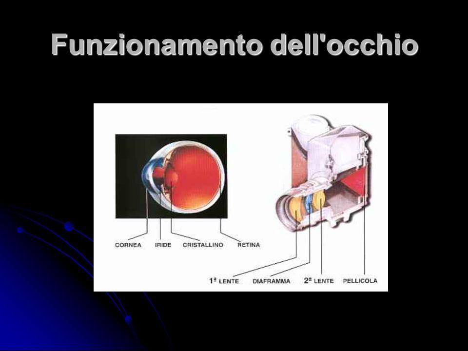 Funzionamento dell occhio
