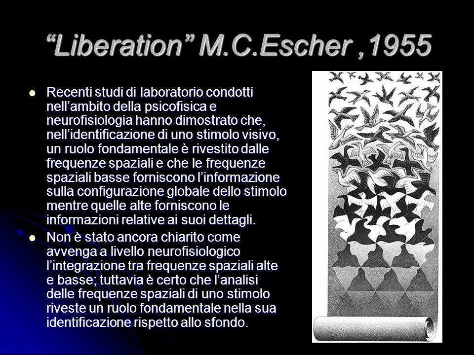Liberation M.C.Escher ,1955