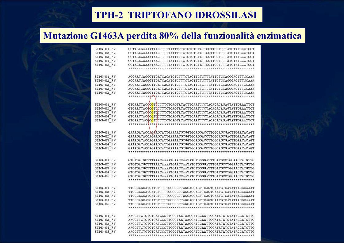 TPH-2 TRIPTOFANO IDROSSILASI