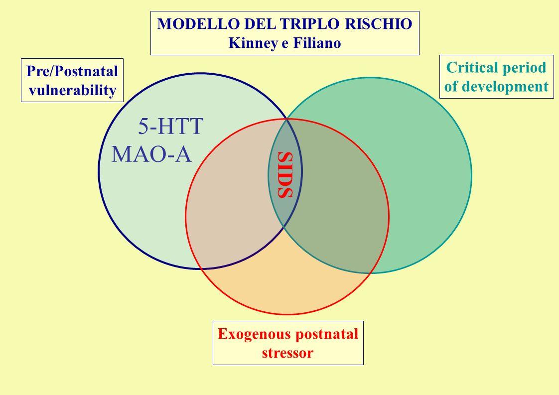 MODELLO DEL TRIPLO RISCHIO