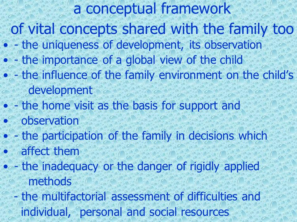 a conceptual framework of vital concepts shared with the family too