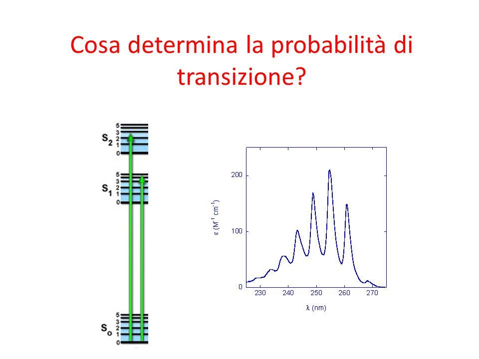 Cosa determina la probabilità di transizione