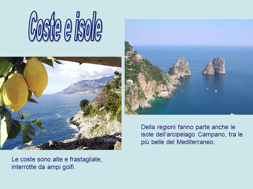Coste e isole Della regioni fanno parte anche le isole dell'arcipelago Campano, tra le più belle del Mediterraneo.