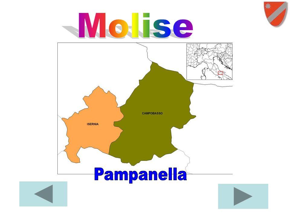 Molise Pampanella