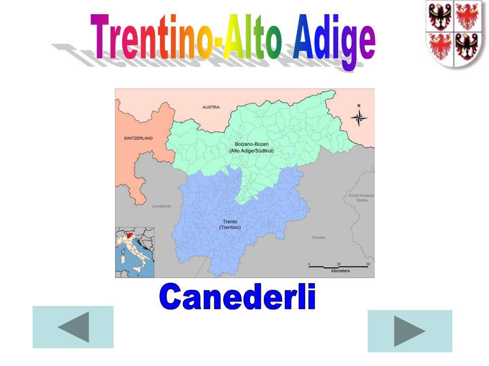Trentino-Alto Adige Canederli