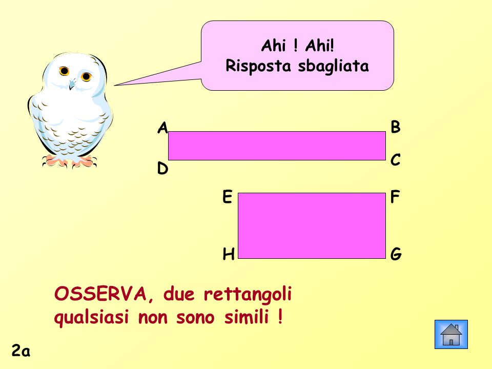 OSSERVA, due rettangoli qualsiasi non sono simili !