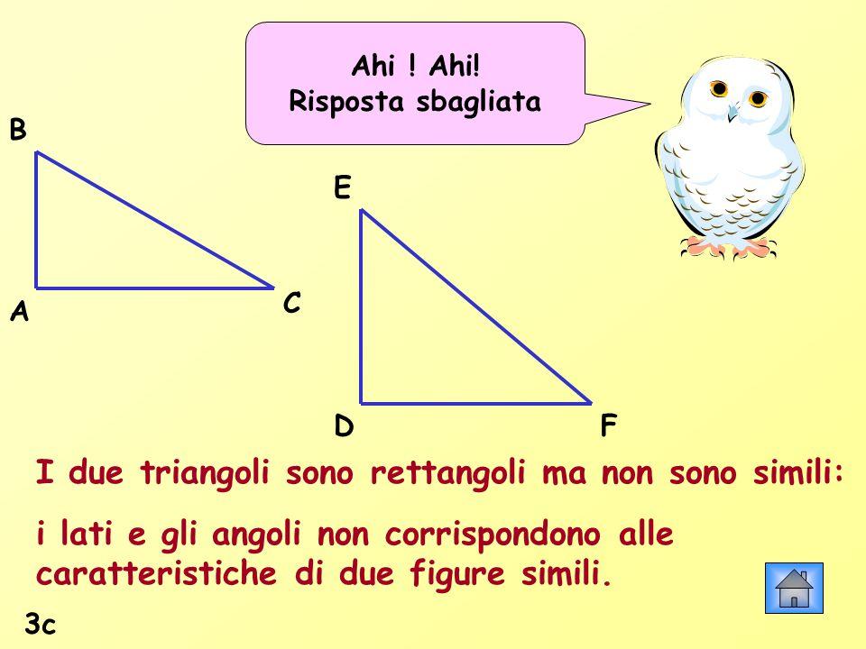 I due triangoli sono rettangoli ma non sono simili: