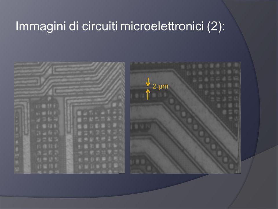 Immagini di circuiti microelettronici (2):