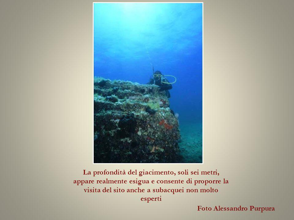 La profondità del giacimento, soli sei metri, appare realmente esigua e consente di proporre la visita del sito anche a subacquei non molto esperti