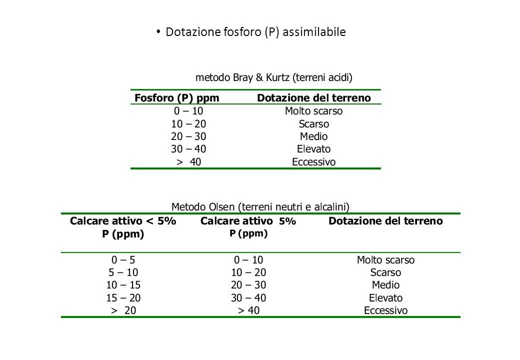Dotazione fosforo (P) assimilabile