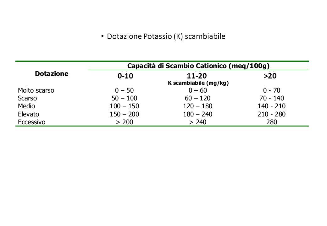 Dotazione Potassio (K) scambiabile