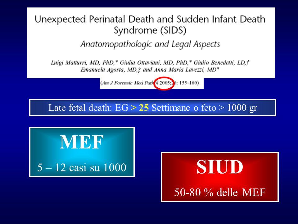 Late fetal death: EG > 25 Settimane o feto > 1000 gr