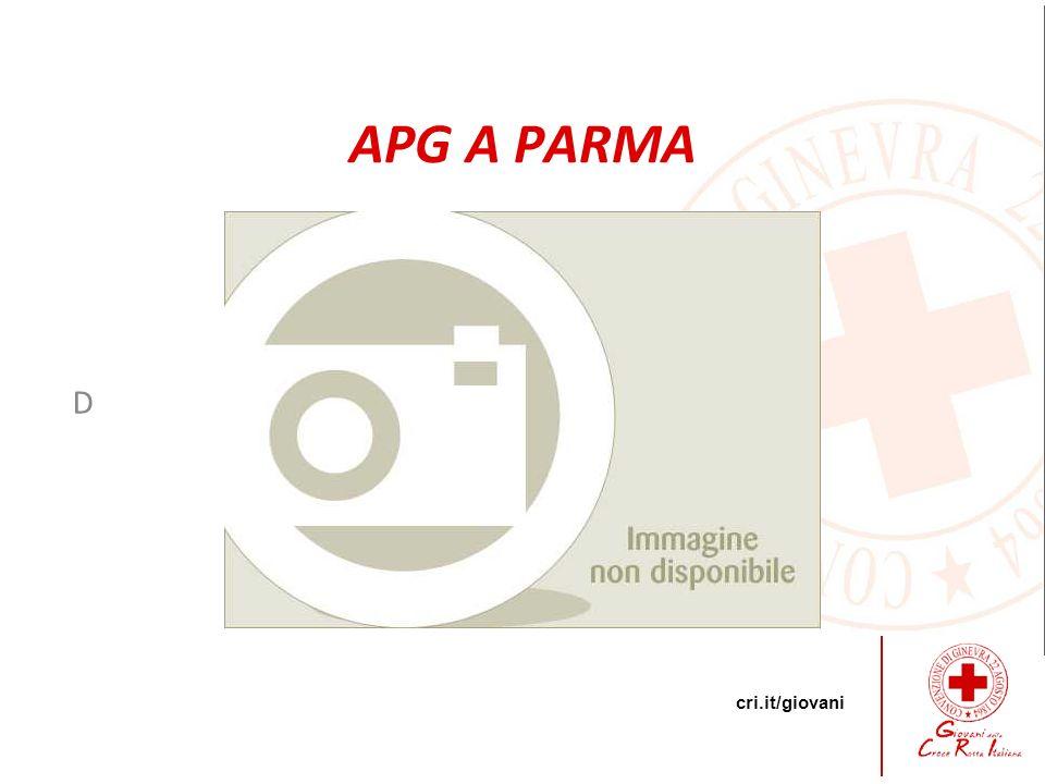 APG A PARMA D 15