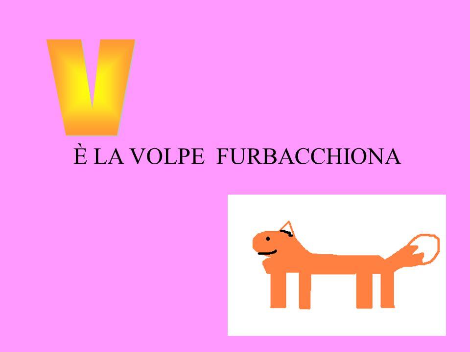 v È LA VOLPE FURBACCHIONA