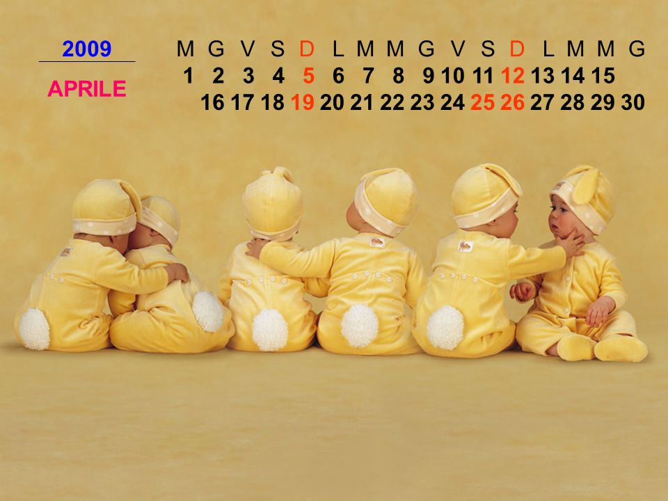 2009 M. G. V. S. D. L. APRILE. 1. 2. 3. 4. 5. 6. 7. 8. 9. 10. 11. 12. 13. 14. 15.