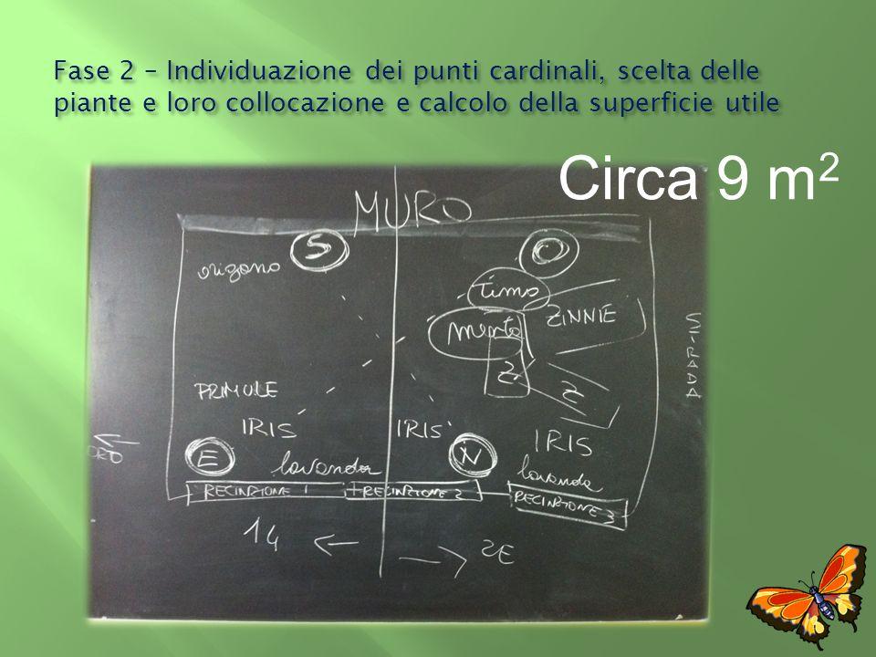 Fase 2 – Individuazione dei punti cardinali, scelta delle piante e loro collocazione e calcolo della superficie utile