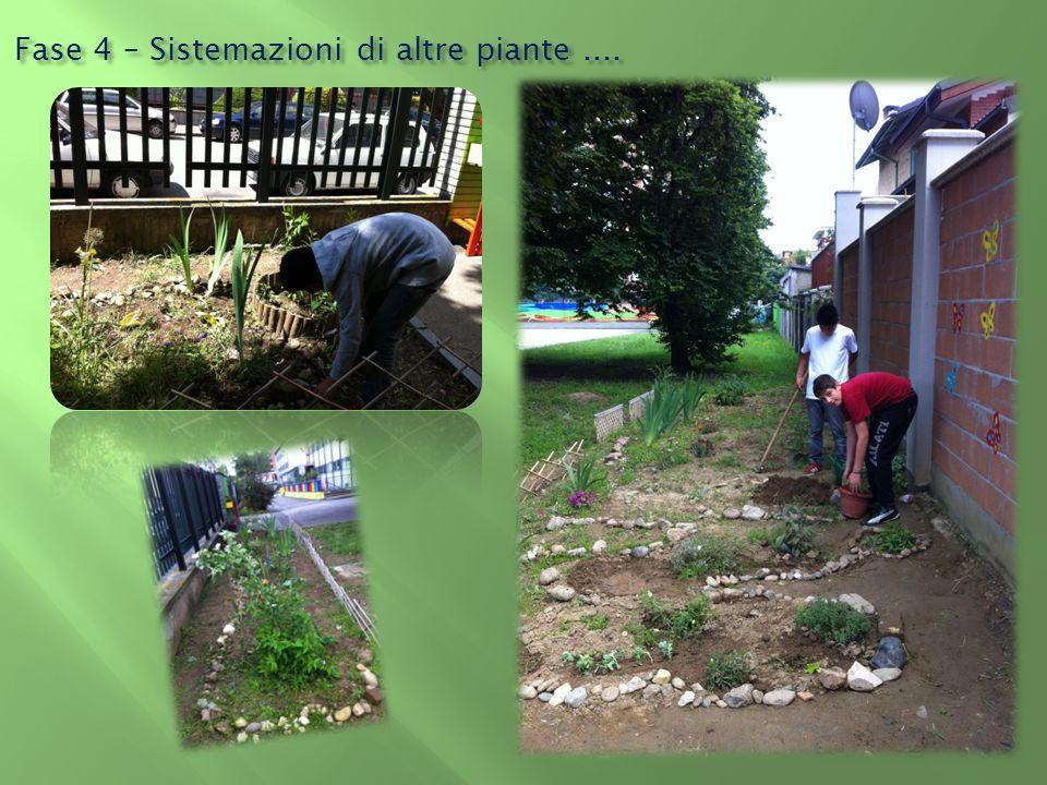 Fase 4 – Sistemazioni di altre piante ....