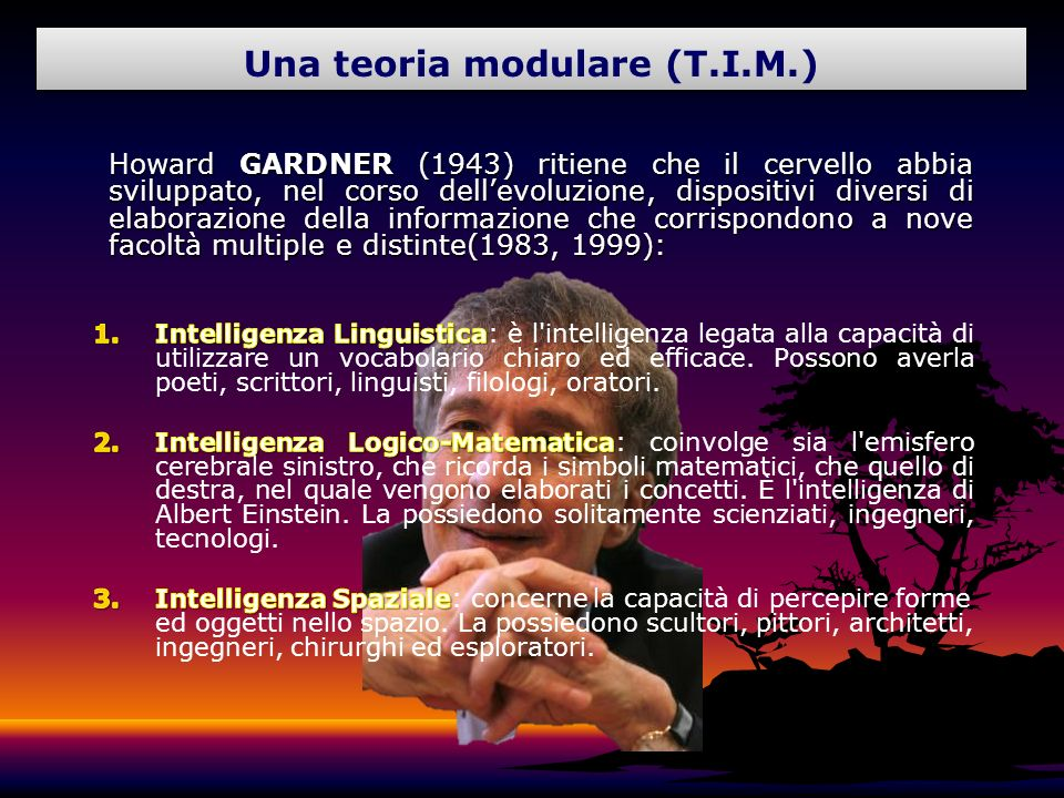 Una teoria modulare (T.I.M.)