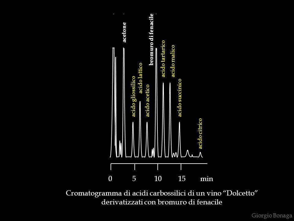 Cromatogramma di acidi carbossilici di un vino Dolcetto