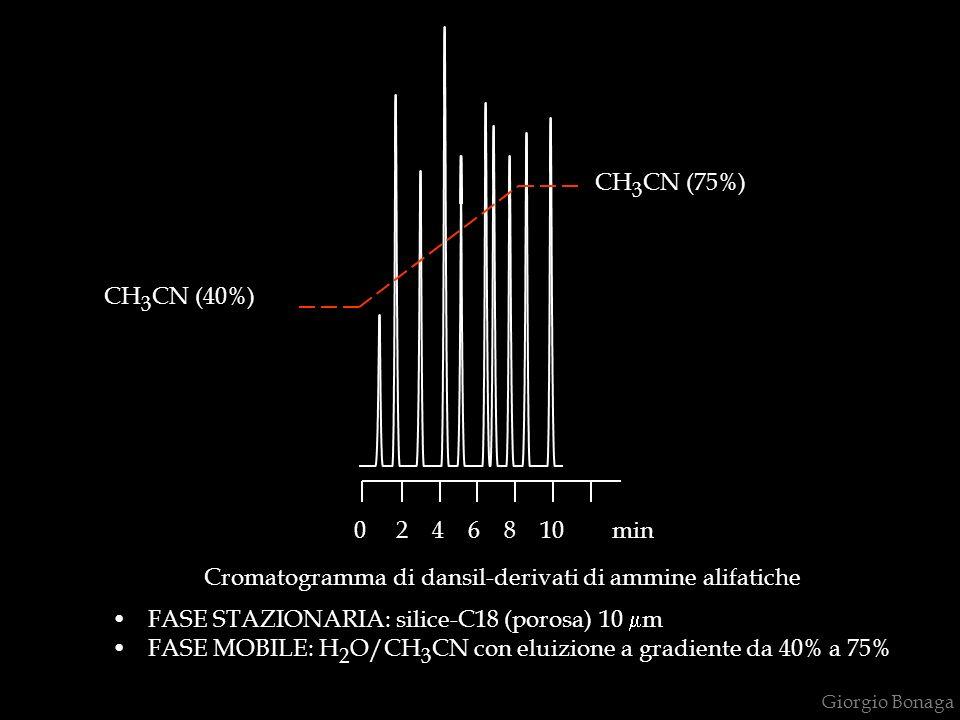 Cromatogramma di dansil-derivati di ammine alifatiche