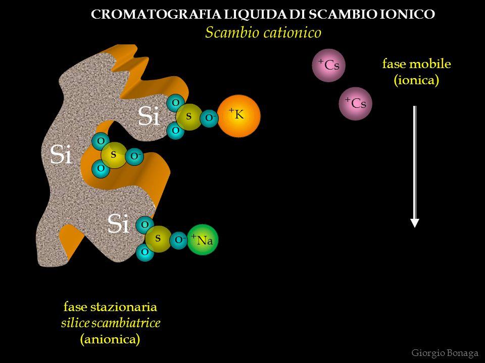 CROMATOGRAFIA LIQUIDA DI SCAMBIO IONICO