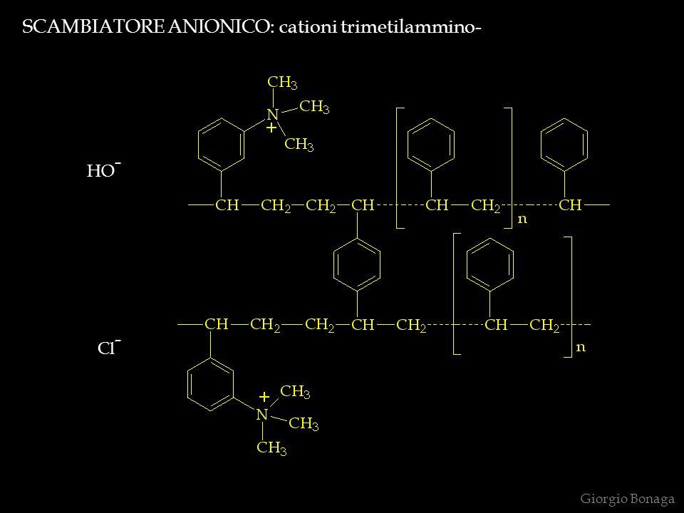 SCAMBIATORE ANIONICO: cationi trimetilammino-