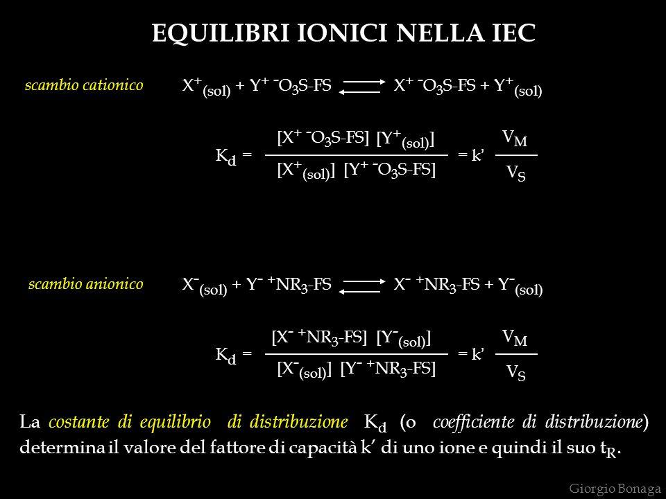 EQUILIBRI IONICI NELLA IEC