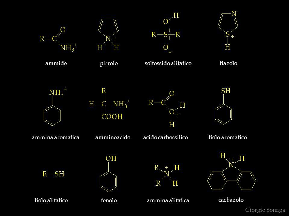 ammide pirrolo solfossido alifatico tiazolo ammina aromatica