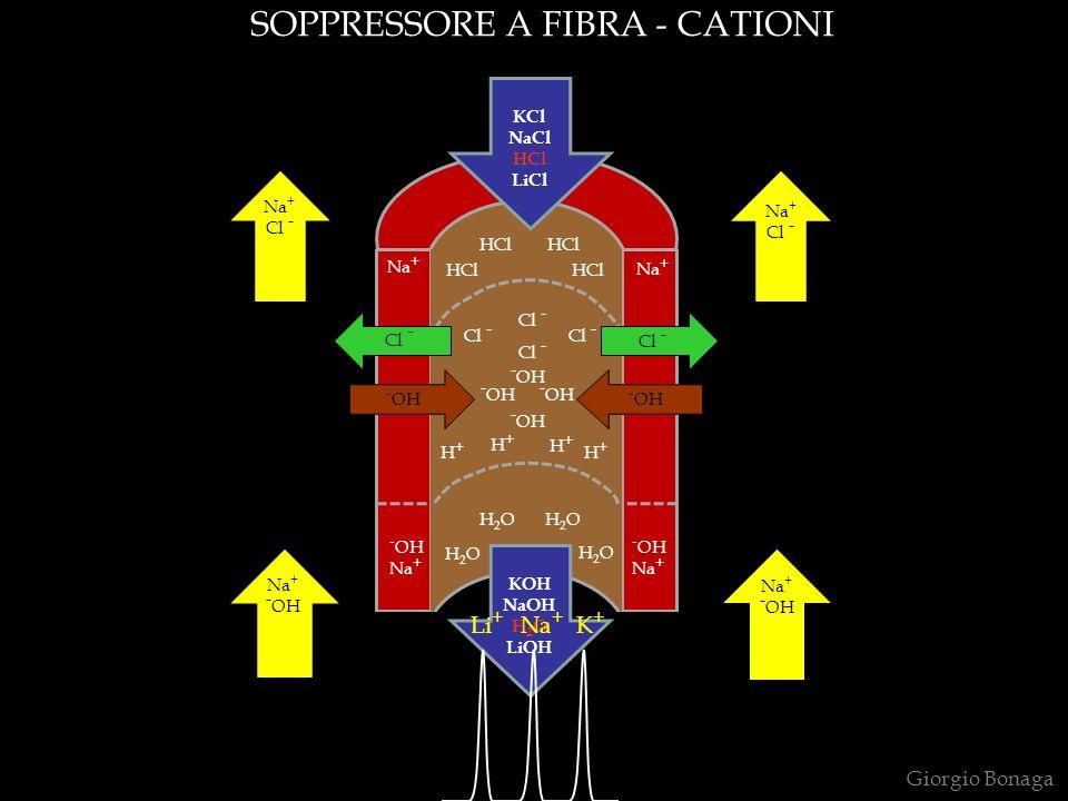 SOPPRESSORE A FIBRA - CATIONI