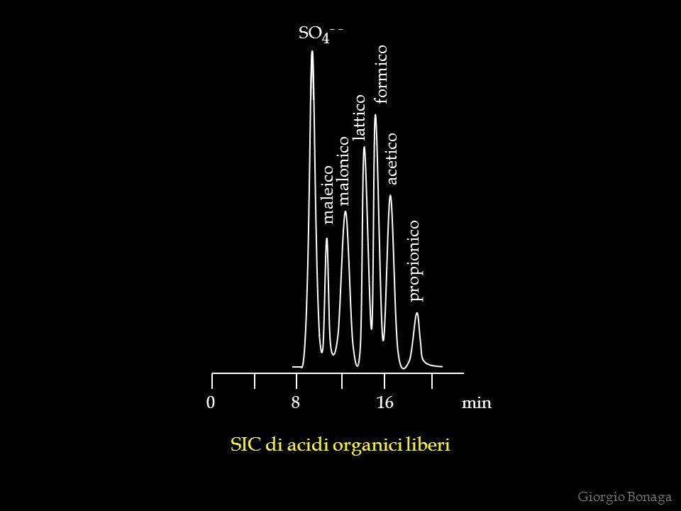 SIC di acidi organici liberi