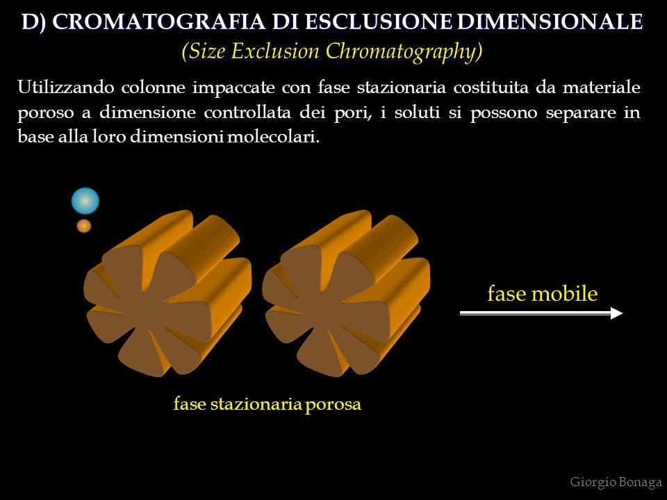 D) CROMATOGRAFIA DI ESCLUSIONE DIMENSIONALE