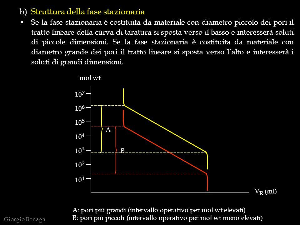 b) Struttura della fase stazionaria
