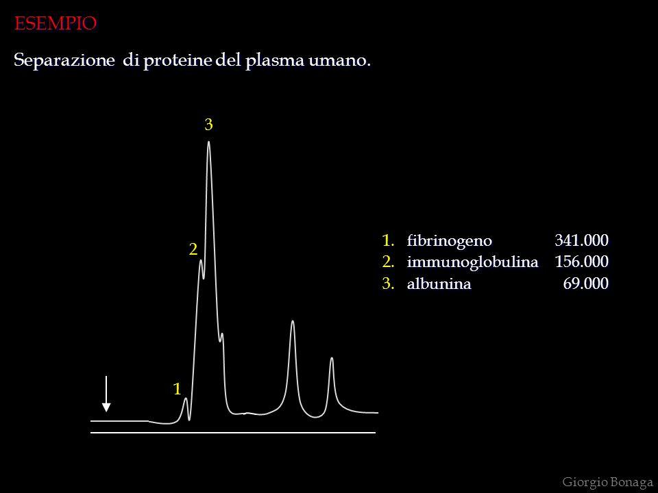 Separazione di proteine del plasma umano.